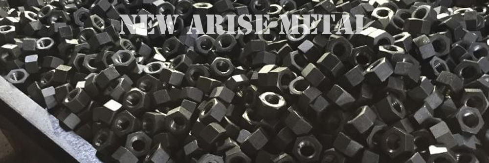 ASTM A194 Hex Nuts Specifications Mumbai
